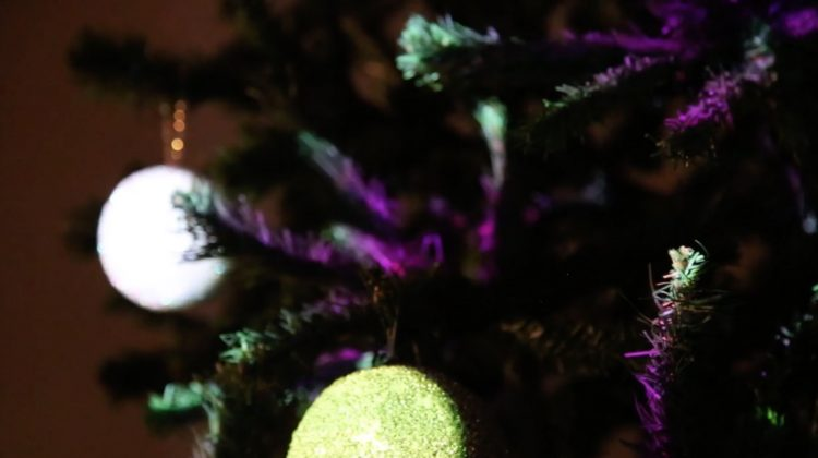 Projection-mapped Christmas tree
